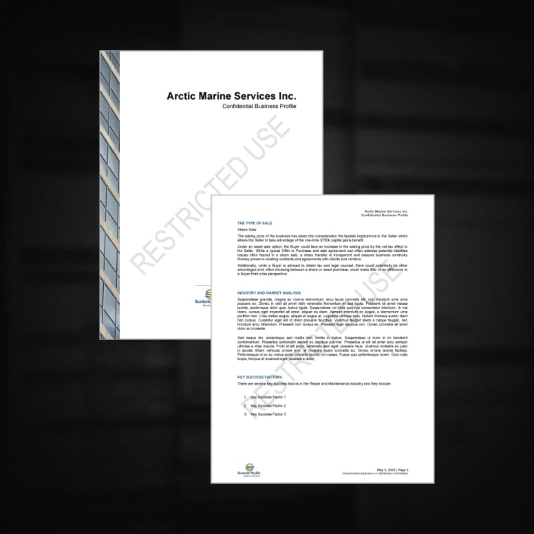 confidential comprehensive business profile documents